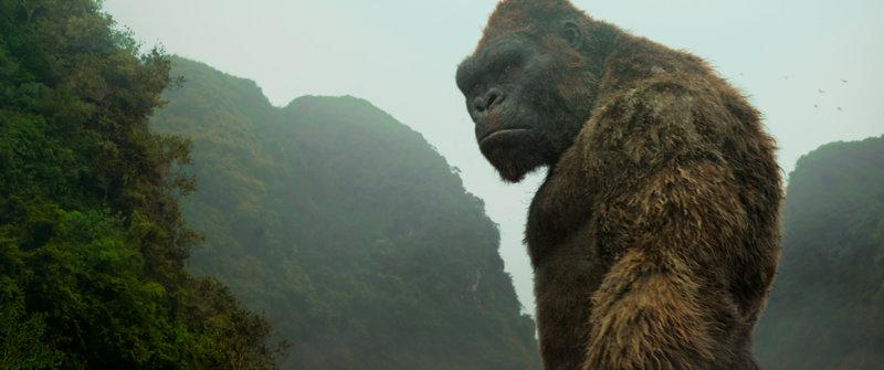 Kong: Skull Island - Bild Nr. 32
