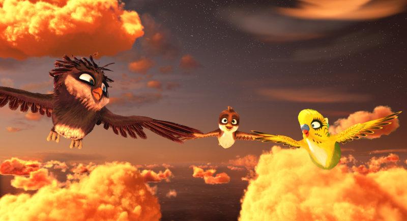 Überflieger - Kleine Vögel, grosses Geklapper - Bild Nr. 1