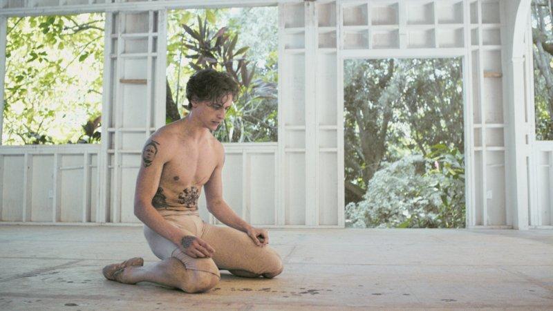 Dancer - Bild Nr. 1