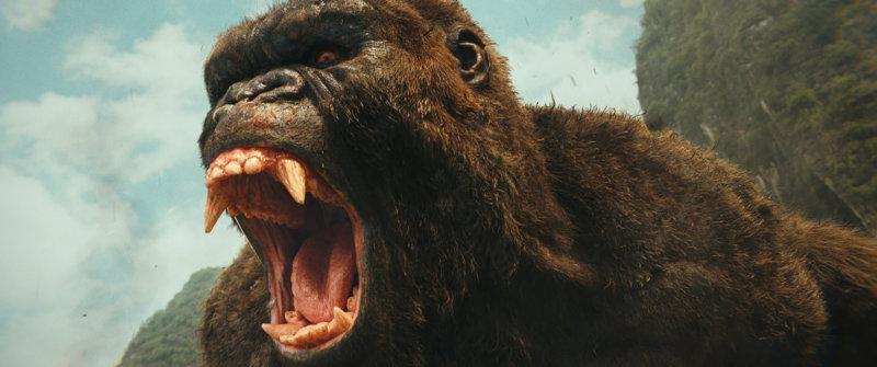 Kong: Skull Island - Bild Nr. 26