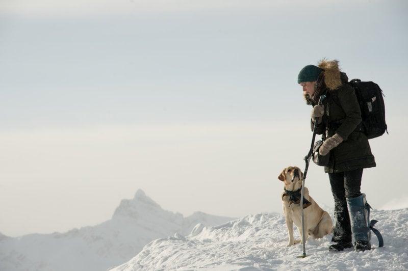 Zwischen zwei Leben - The Mountain Between Us - Bild Nr. 1