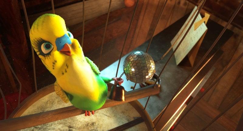 Überflieger - Kleine Vögel, grosses Geklapper - Bild Nr. 6